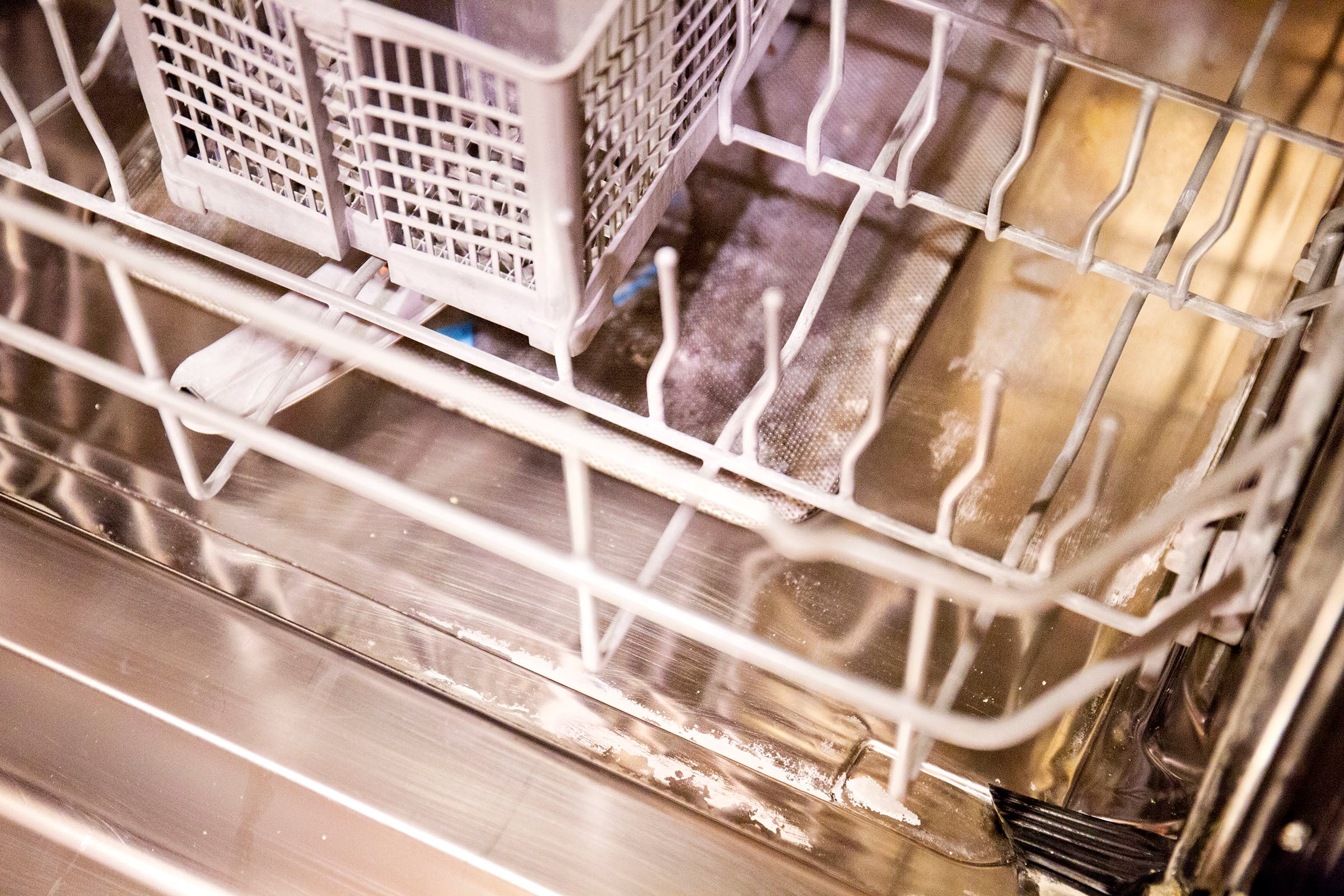 Dishwasher_Lime_9794