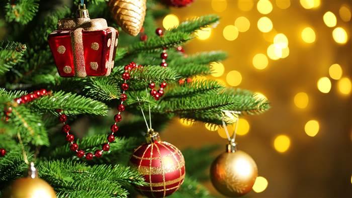 christmas-tree-today-tease-1-151201_dd6ec0167e769c87de32fd740c83f70a.today-inline-large.jpg