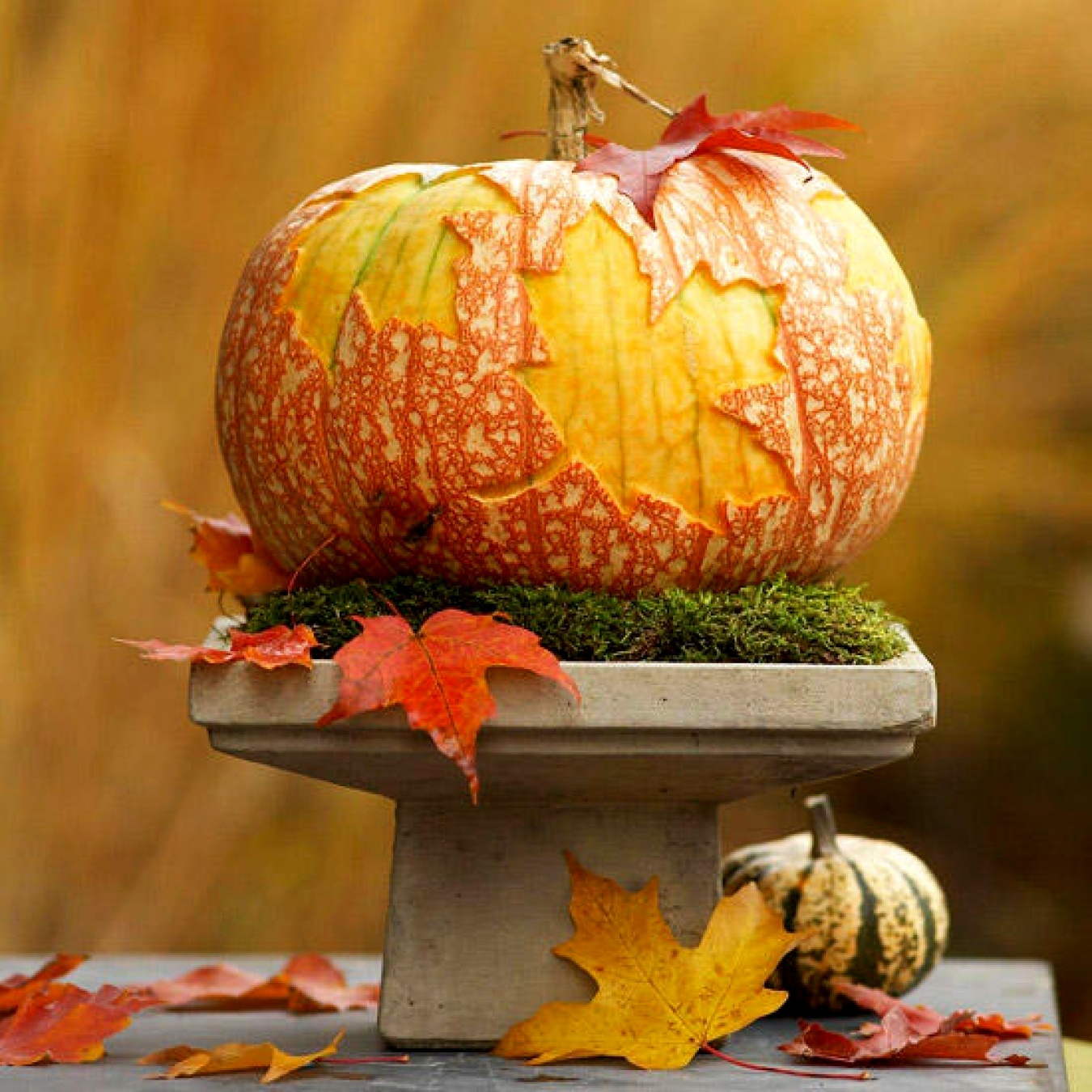 decorating-with-pumpkins-and-gourds-ideas-7