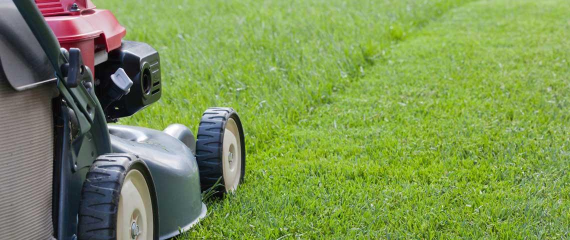 lawnmowing_header.jpg